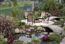Landscaping / Garden