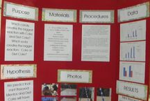 science fair project' / by Jenelle Phibbs