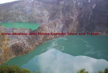 Travel to Flores island Indonesia / Indonesia tours and Travel Company arrange all kind of tours and Travel to the island of: Flores, Komodo national park and other part of Indonesia. www.ematour.com