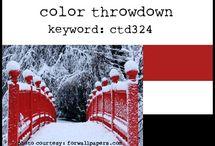Color Throwdown - 2015