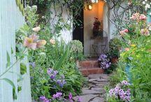 Schöner Garten-Eingang