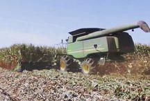 Winning the war on GMO's