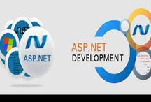 Website Development Company in India / Macreel Info Soft is leading Website development Company in India. We also provide professional .Net Development  services in India. Web Development can increase visibility of your Website  to gain business. We have strong young talented it experts team which have done several projects.