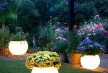 just trippy garden