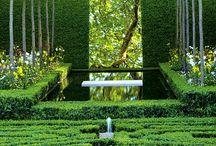 geometrical garden