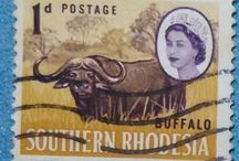 Personal STAMPS Collection RHODESIA