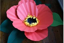 Paper flowers / by Patricia Hayes