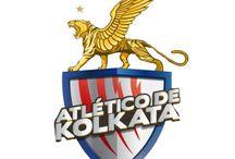 Indian Super League(ISL) 2014