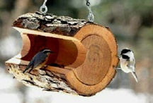 Comedero aves