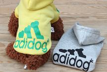 Dog Clothing and Pet Products