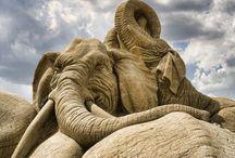 Sand Sculptures / Sand art. Sand skulptur. / by Anke Metzger