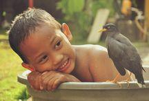 Persahabatan Seorang Anak dengan Burung Jalak