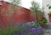 Drought friendly gardens
