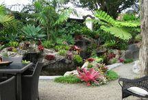 Richard Moore Garden Designs
