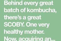 Kambucha, yogurt...