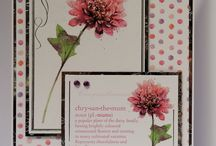 Kanban Crafts Language of Flowers / Inspiration using Kanban Crafts Language of Flowers Papercraft Collection