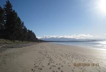 Views of the Tasman region