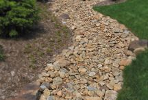Side Yard/Drainage Solution / Plants for sunny side of house, drainage solution for water runoff