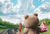 Meda Ted
