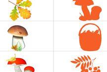 jesien cienie i inne