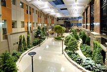 Remarkable medical facilities