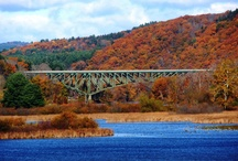 Home = Vermont! / Images, things I love about this beautiful state I live in.