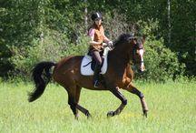 Limoné La / Liisan kanssa pellolla kotona Laajantallilla vuonna 2008. Liisa oli silloin 9-vuotias.