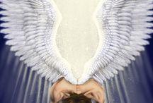 ANGELS AND DRAGONS AND PEGASUS