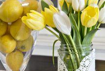 spring day ideas