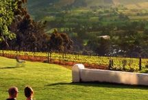 wine route south africa