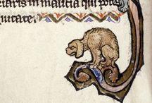 Marginal Menageries / Animals, manuscripts, weird + wonderful.