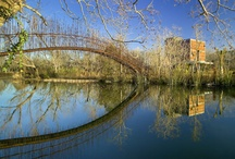Bridges / by Cynthia A Stevens
