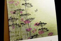 meadow flower cards