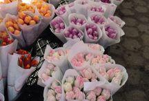 Blumen ❤️