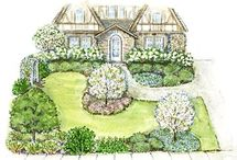 Landscaping Ideas / by Sue Shimomura