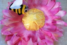 Bees and Insects Lesson Plans