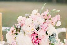Mohican Flowers: for Meghan K. / The Otesaga Resort Hotel