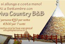 Offerte e vacanze low cost  / Questa board è dedicata a tutte le nostre offerte. High enjoyment! Low price!
