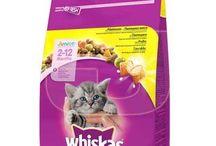 Kedi Mamaları / juenpetmarket.com'da bulabileceğiniz kedi mamaları.