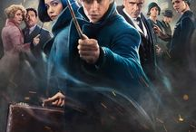 fantastic beasts and wheare to find them❤