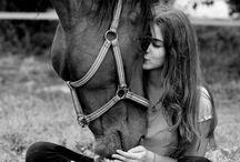 i <3 los caballos & la charreria * <3