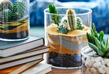 Create Your Own Terrarium / This Christmas, plants are officially cool – and terrariums are making a comeback. Miniature gardens under glass, they're the perfect home for your Insta-worthy desktop succulents. Find inspiration and ideas here, before checking out our festive Pinterest pop-up: http://www.stylist.co.uk/life/hand-make-your-christmas-with-stylist-and-pinterest