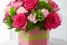 Mother's Day Flowers / by Coady Florist