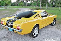 Bumblebee's step brother
