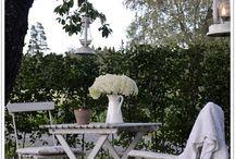 Mimo's garden