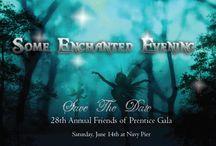 Friends of Prentice 28th Annual Fundraising Gala