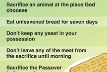 Passover / by 'Tis The Season