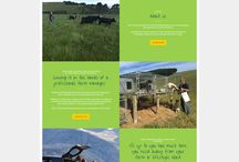 """Agriculture"" Zeald Website Design"