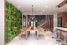 növény a lakásban