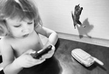 pisici et co